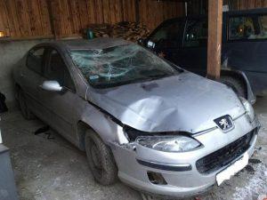 skup aut rozbitych mierzyn